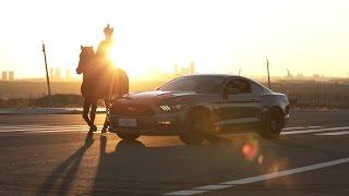 Mustang a čínský rok koně – symbolické spojení v reklamě Fordu