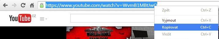 kopírovat url videa a stáhnout